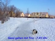 20130317-154714.jpg